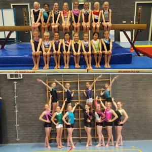 Gymnastiekvereniging Barendrecht trots op haar finalisten!