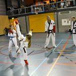 Top prestaties op het NK voor Barendrechtse karateclub Him Yong Gi: 30 keer een medaille