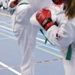 Barendrechtse karateclub Him Yong Gi valt in de prijzen
