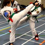 Him Yong Gi verovert 8 gouden medailles op het EK karate